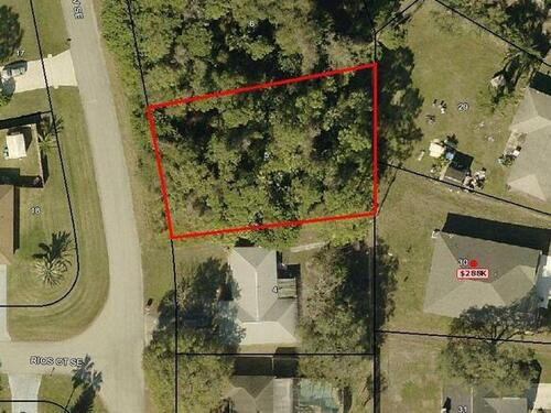1343 Twisdale Avenue SE, Palm Bay, FL 32909